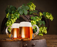 Two beer glasses with hops Royalty Free Stock Photography