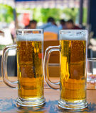 Two beer mugs close-up Stock Images