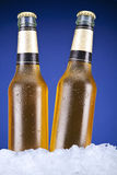Two beers Royalty Free Stock Images