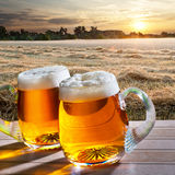 Two beers at sunrise Stock Photography