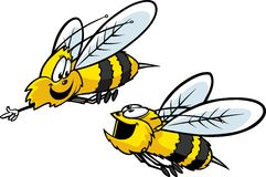 Two Bees. Two happy cartoon Bees flying and smiling. Vector and high resolution jpeg files available. Thank you for your time vector illustration