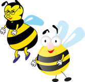 Two bees. Bee with glasses and big bee funny Royalty Free Stock Photos