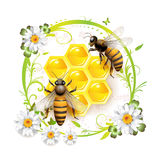 Two bees and honeycombs. Over floral background isolated on white stock illustration