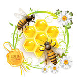 Two bees and honeycombs. Over floral background isolated on white Royalty Free Stock Photo