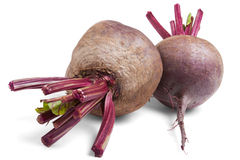 Two beets Stock Images