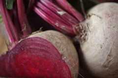 Two beets closeup Stock Image