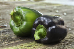 Two bell peppers. Oner green and one purple bell pepper on a wood table Stock Photography