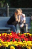 Two on a bench in park Royalty Free Stock Photo