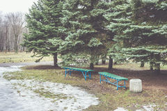 Two benches and bin in the park. At the firs. Early spring, the snow and ice on the grass Stock Photography