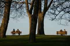 Two benches, two couples at sunset stock image