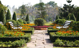 Two benches in the garden. Near Bangkok Thailand royalty free stock photography