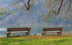 Two benches, idyllic lake schliersee Royalty Free Stock Image