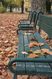 Two benches in line in park in fall with  foliage Royalty Free Stock Photo