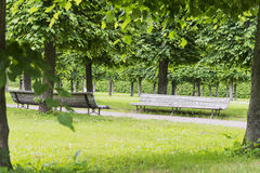 Two benches in the Park. The old benches the Park is in the summer garden Stock Images