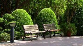 Two benches in the park Stock Image