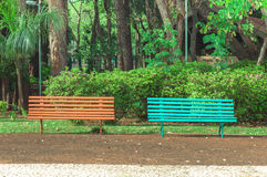Two benches side by side on a square with trees and a beautiful green vegetation background. Stock Photography
