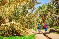 Two berber women in oasis of Merzouga village in Sahara desert, Morocco. Two berber women in national clothes walking in oasis of Merzouga village in Sahara Royalty Free Stock Photos