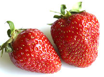Two berries of strawberry Stock Photography