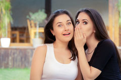 Two Best Friend Girls Whispering a Secret. Young women sharing gossip and whispering secrets Stock Photography