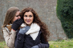 Two best friends are whispering and laughing royalty free stock photos