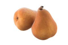 Two Beurre Bosc pears Stock Photos