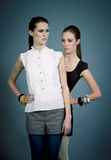Two beutiful brunette girls in casual fashion and accessory Stock Images