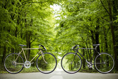 Two bicycles. On the way to the mountains Royalty Free Stock Image
