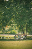 Two bicycle in park Stock Image