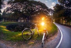 Two bicycle at the park in Thailand Stock Photo