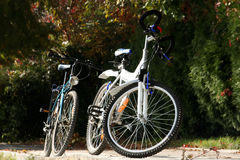 Two bicycles. Two parked bicycles in a park Stock Photo