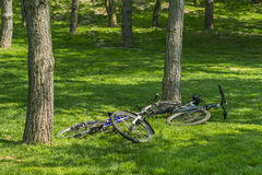 Two bicycles left in the grass Stock Images