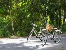 Two bicycles on local road Stock Images
