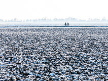 Two bicyclists in polder in winter, Holland Stock Image