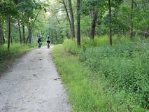 Bike couple in a park trail. Two bicyclists ride in a park, enjoying a nice afternoon Stock Photography