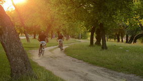 Two bicyclists riding on a dirt road stock video