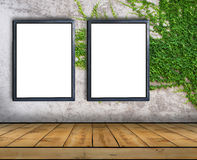 Two big blank billboard attached to a ivy wall with wooden floor Stock Photos