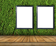 Two big blank billboard attached to a ivy wall with wooden floor Stock Images