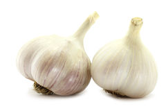 Two big garlics. On the white background Stock Image