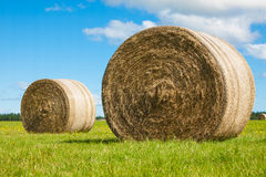 Two big hay bale rolls in a green field Royalty Free Stock Photo