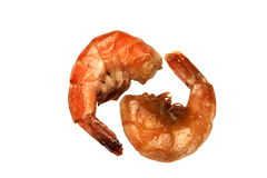 Two Big King Size Grilled Shrimps On White Isolated Background Stock Image