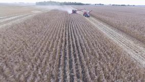 Two big modern truck combine agriculture vehicles harvesting organic wheat crops from farming field in 4k aerial view stock video