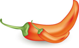 Two Big and Small Red Chili Peppers Royalty Free Stock Photo