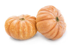 Two big yellow ripe pumpkin . Stock Image