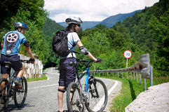 Two bikers. At traveling countryside Stock Images