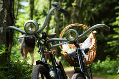 Two bikes in forest royalty free stock photo