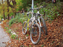 Two bikes leaning at lamppost Stock Photography