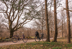 Two bikes parked in a small country road in the forest, Jomfruland National Park, Kragero, Norway Stock Images
