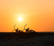 Two bikes silhouettes at the tropical sunset Stock Photo