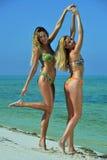 Two bikini models posing sexy Royalty Free Stock Photos
