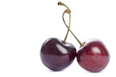 Two Bing Cherries Stock Image